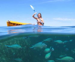 Kayaking on Ningaloo Reef. by Penny Murphy 